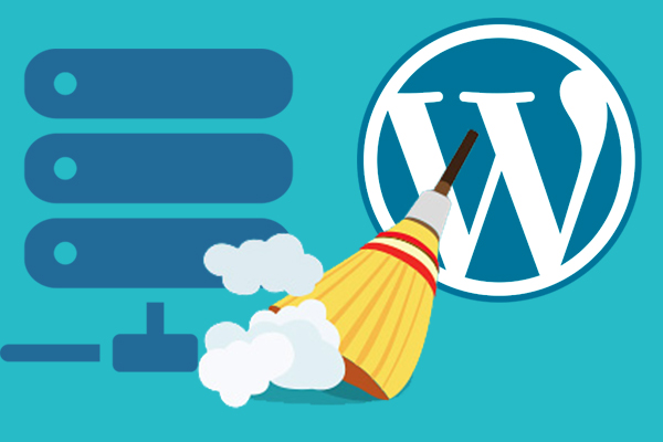 Come facilmente ottimizzare il database di WordPress - Professor falken