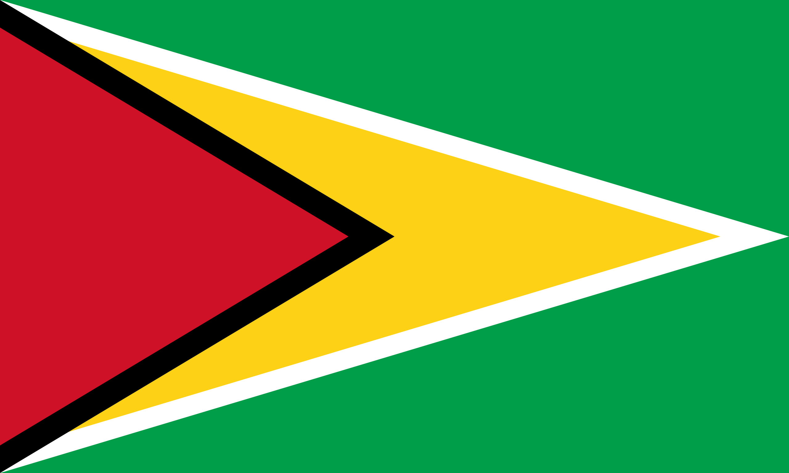 guyana, χώρα, έμβλημα, λογότυπο, σύμβολο - Wallpapers HD - Professor-falken.com
