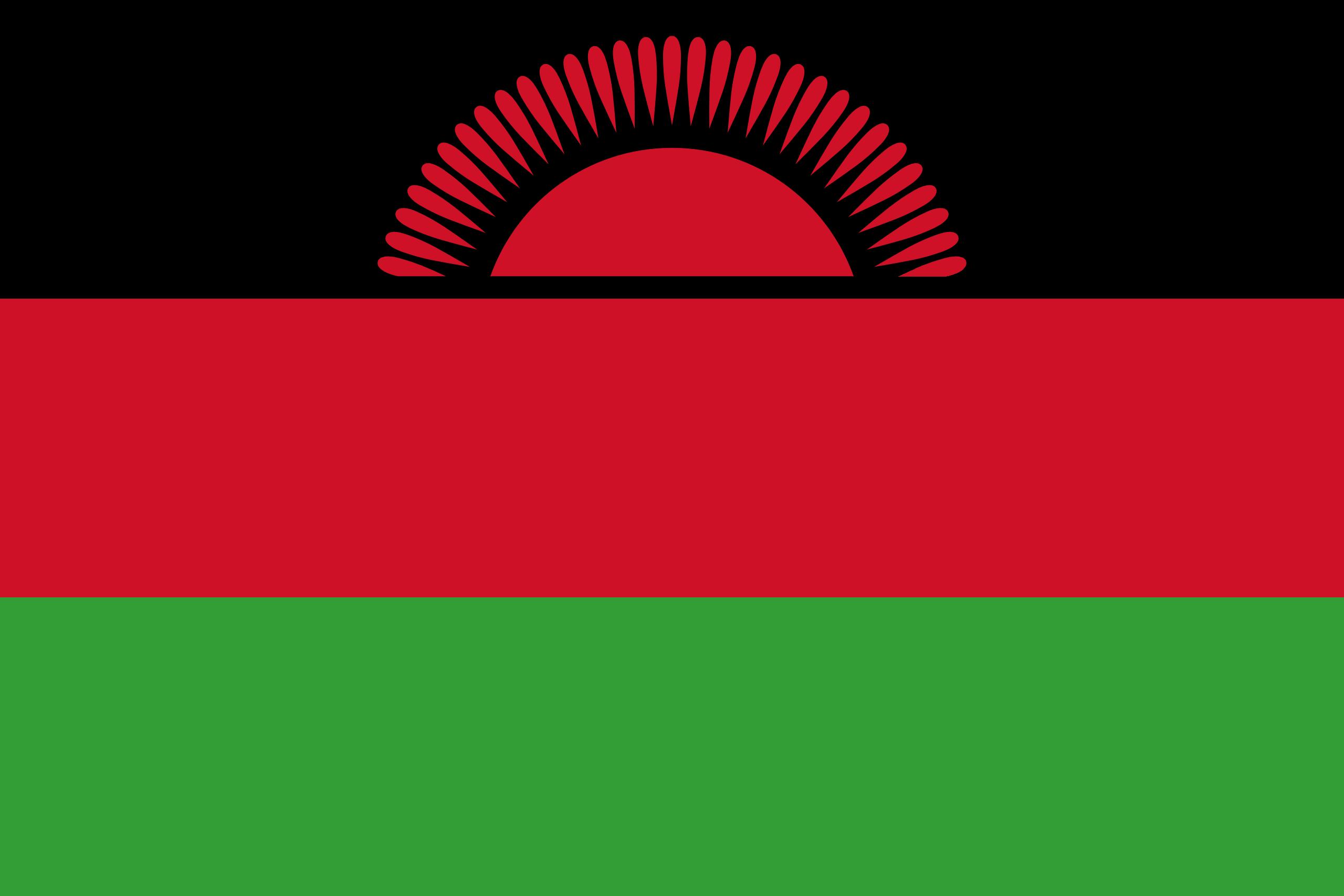 malawi, страна, Эмблема, логотип, символ - Обои HD - Профессор falken.com