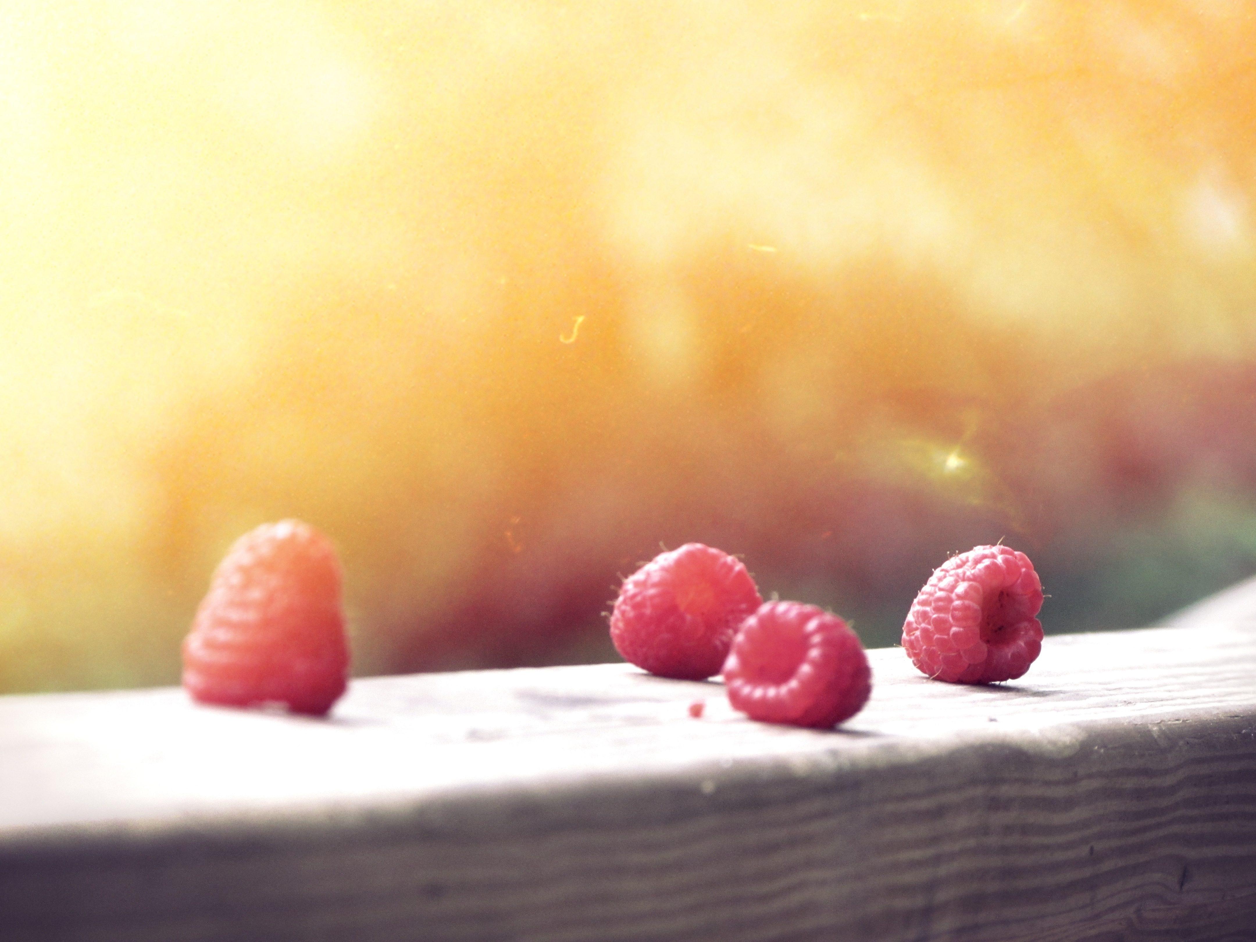 arándanos, madera, fruta, sol, luminosidad - Fondos de Pantalla HD - professor-falken.com