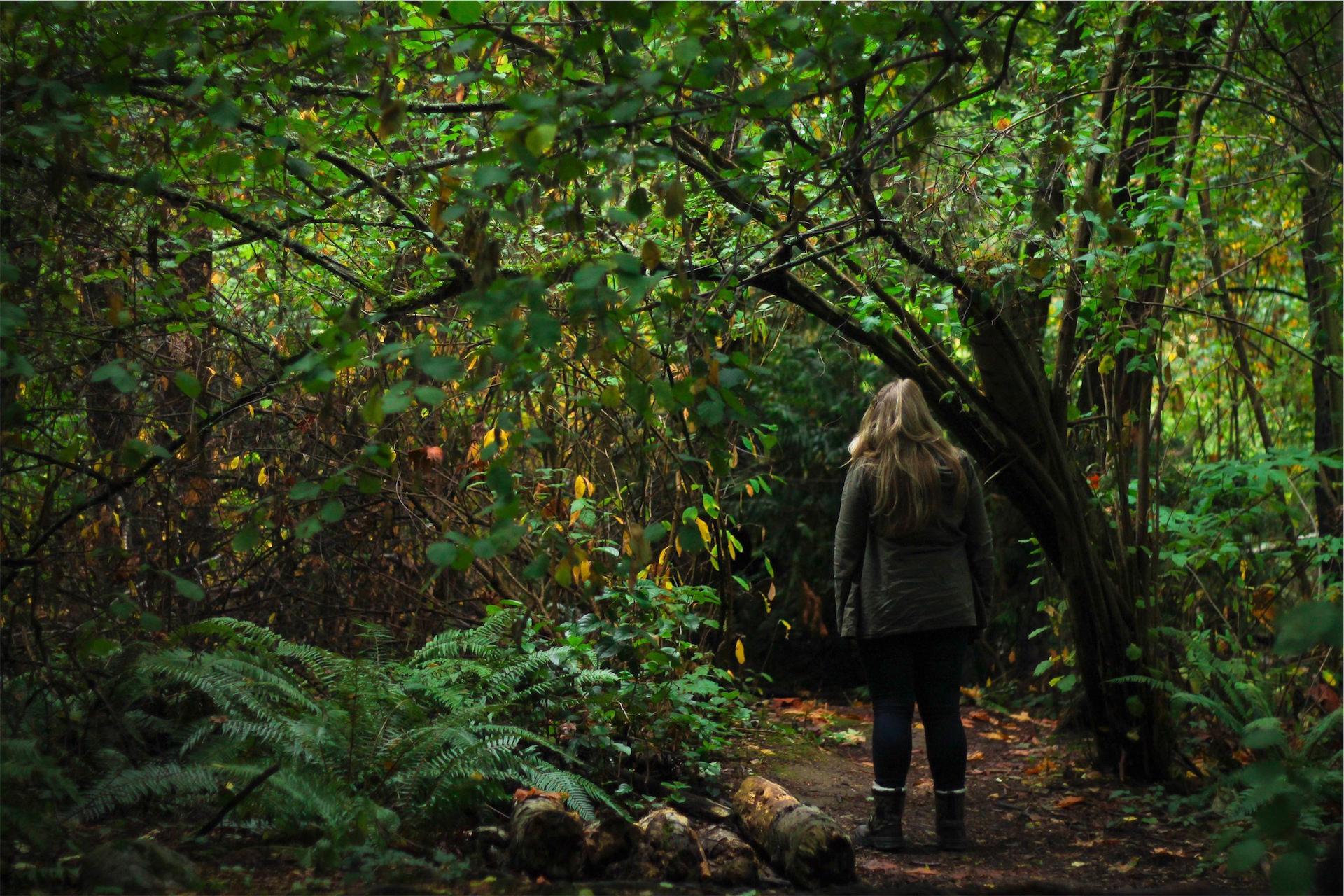 女人, 森林, selva, 字段, follaje - 高清壁纸 - 教授-falken.com