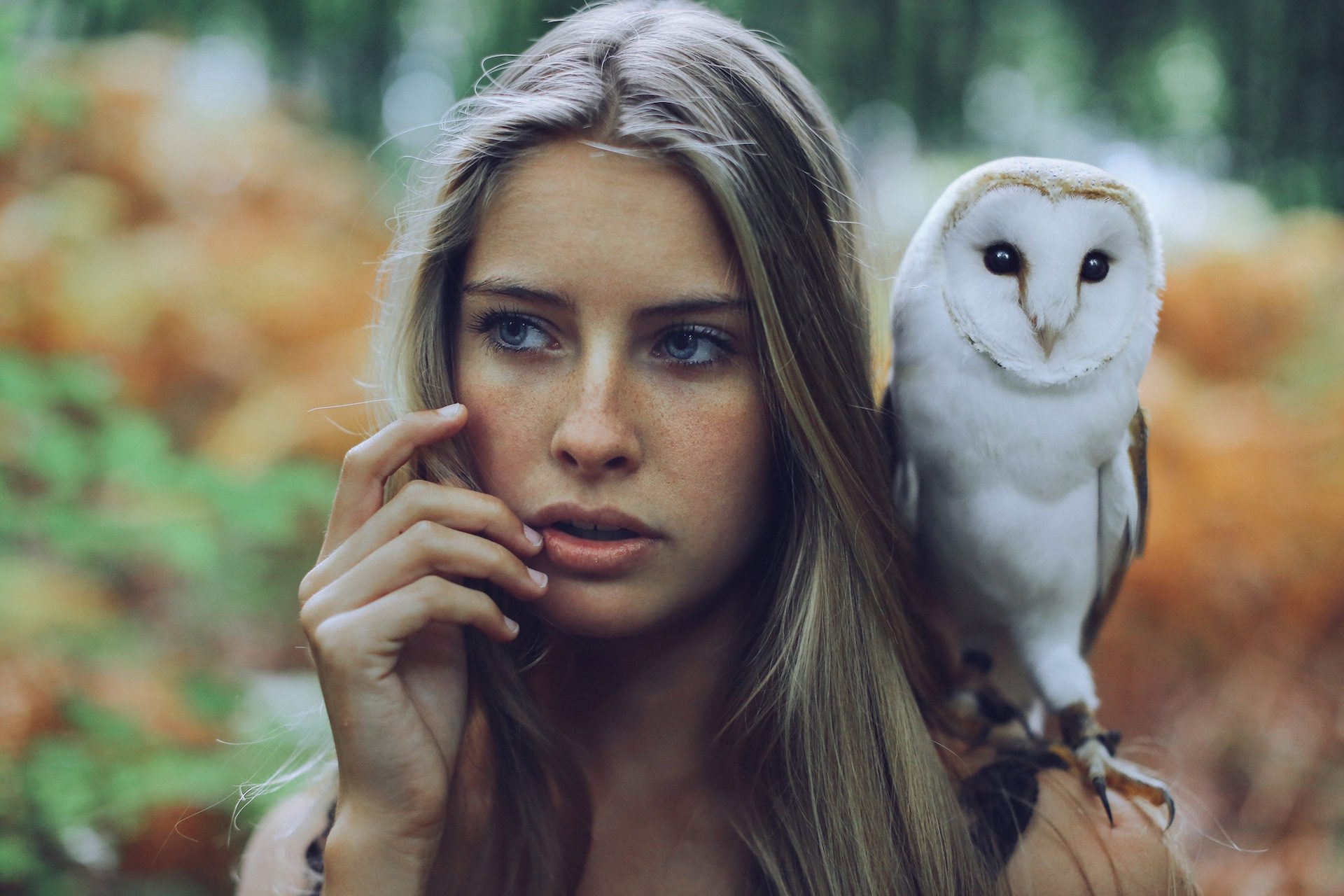mulher, CORUJA, Pássaro, Animal de estimação, Olha - Papéis de parede HD - Professor-falken.com